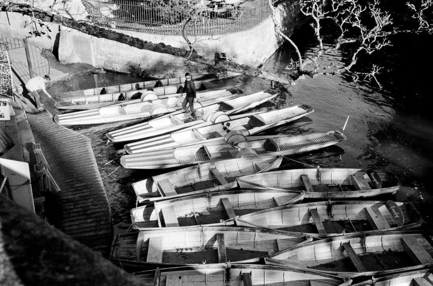 rowing-boats